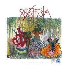 Synaesthesia: rock progressive moderno
