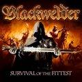 Superband in arrivo coi Blackwelder di Ralf Scheepers