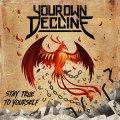 YOUR OWN DECLINE: ALTERNATIVE/METALCORE DI INDUBBIO VALORE!!