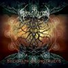 Con il loro terzo album, gli statunitensi Abnormality non deludono affatto le aspettative