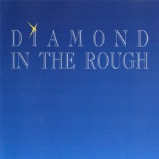 Diamond In The Rough - pop rock che ci riporta agli Eighties